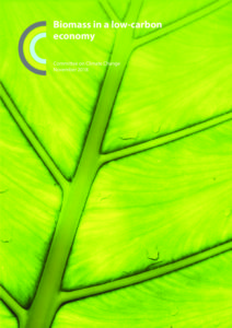 Biomass in a low-carbon economy (2018) - Committee on
